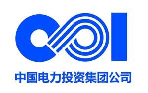 中国电力投资有限公司
