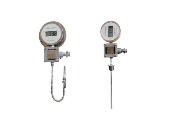 防爆数字温度显示仪